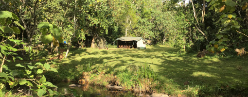 Ragati Conservancy, Ragati Conservancy, Ragati, Mount Kenya, Mt. Kenya, UNESCO World Heritage Site, Trout fishing, fishing, Kenya, Naro Moru, Nanyuki, East Africa, fish, trout, rainbow trout, rainbow trout fishing